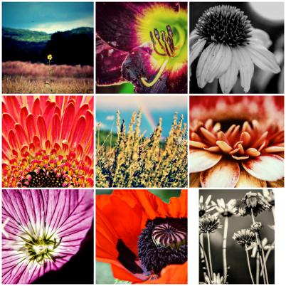 PicsArt_04-29-10.19.48